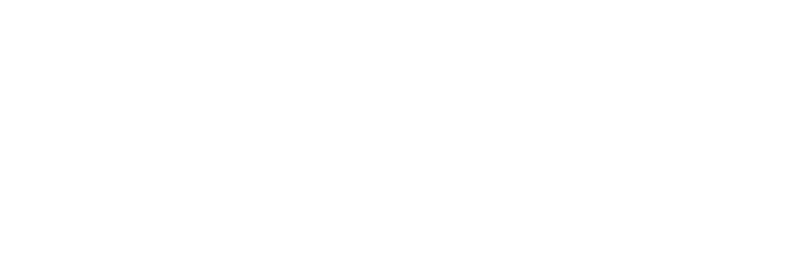 Be Life logo